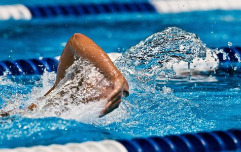 Skyline Swimming Dives Into A New Year